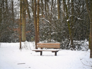 neemt sneeuwbad