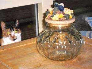 vreemde voorraadpot met veel versierselen, pasta, aubergines en kat