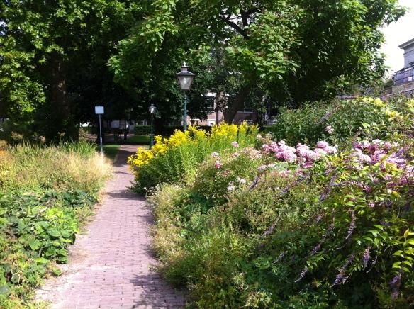 schitterende tuin aan Leidse singel in parkje