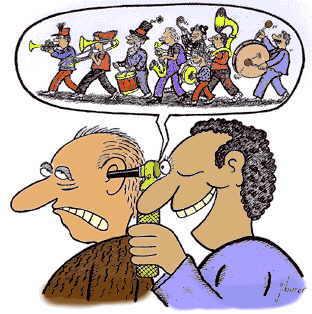 gehoor, binnenoor, gehoorbeschadigingen snel opgelopen, gevaar van te harde geluiden,