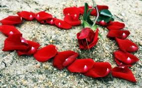 liefde, hart, geliefde, houden van, amor, love. liebe, rood hart, red heart, rot hart, coeur rouge