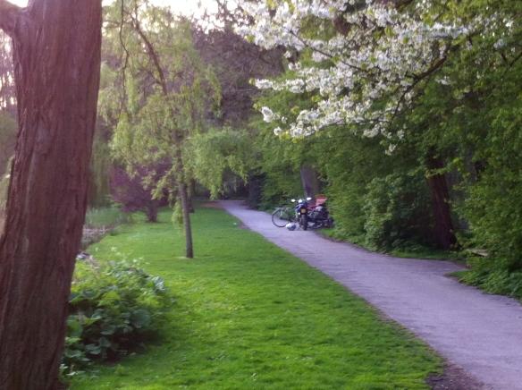 Het Leidse Hout, lente, bloeiende bomen, hangjongeren