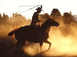 cowboy op paard met zweep
