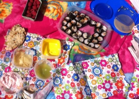 sushi, pickled ginger, zeewier, wasabi, aioli