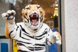 carrieretijger, grrrrr, tijger met klauwen
