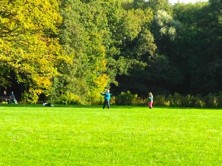 park, het Leidse Hout, uitlaatveld, wandelen