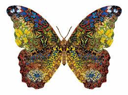 kleurrijke vlinder, butterfly, papillon