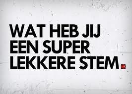 EEN LEKKERE STEM, SUPER LEKKER, STEM, STEMGELUID,