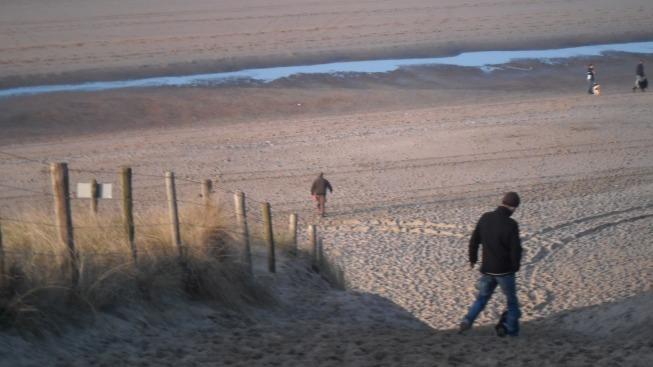 Strand, mooi weer, zon, hondje,, kruising engelse springer spaniel en epagneul breton, met man