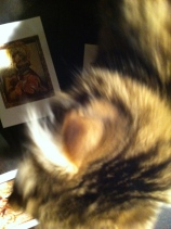 Icoon, geborduurd door Lammert Segaar, borduurwerk, Icoon, kat