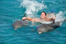DOLFIJN, ZWEMMEN MET DOLFIJNEN, speciale band mens en dolfijn,