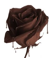 zwarte chocolade, chocolade, taart, roos, repen, krullen