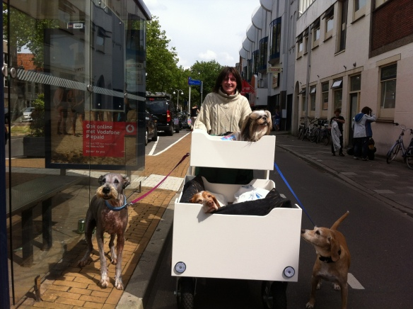 Dog Lady, vrouw met gehandicapte honden, hondenvrouw, kar met zieke en zielige hondjes