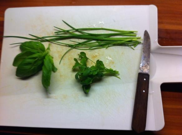 kruiden, basilicum, bieslook, koriander