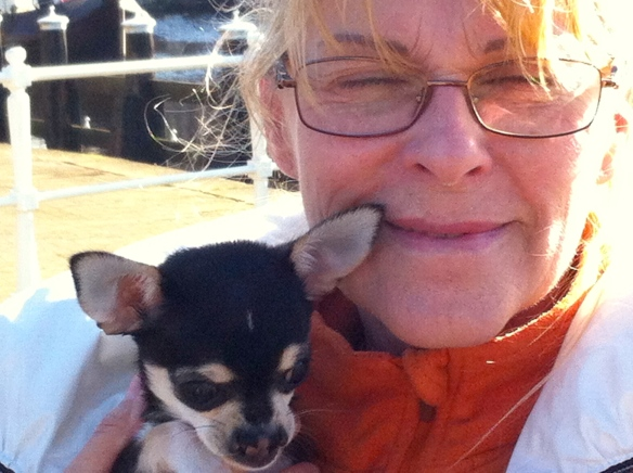 vrouw me hondje, chiwawa met hazenlip, gehandicapt puppy, pup, hazenlip, gek neusje bij hond