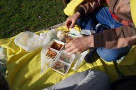 knappe man, leuke vent, lekker ding, eten, picknicken, Leidse Hout