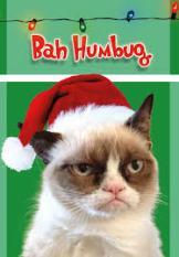 BAH, BAH HUMBUG,