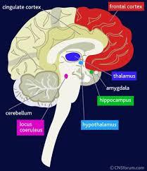 posttraumatische stress, PTSS, Post traumatic stress disorder, PTSD