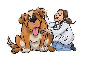 dierenarsten, grap, comic, animal doctor,