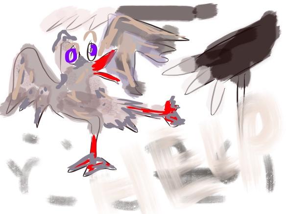 vogel aangevallen door een kat, bange vogel, help