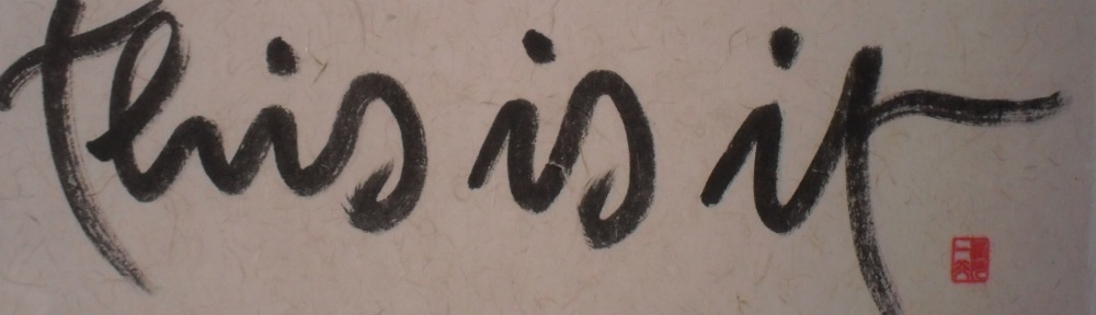 no mud, no lotus, boeddhisme, Thich Nhat Hanh, this is it