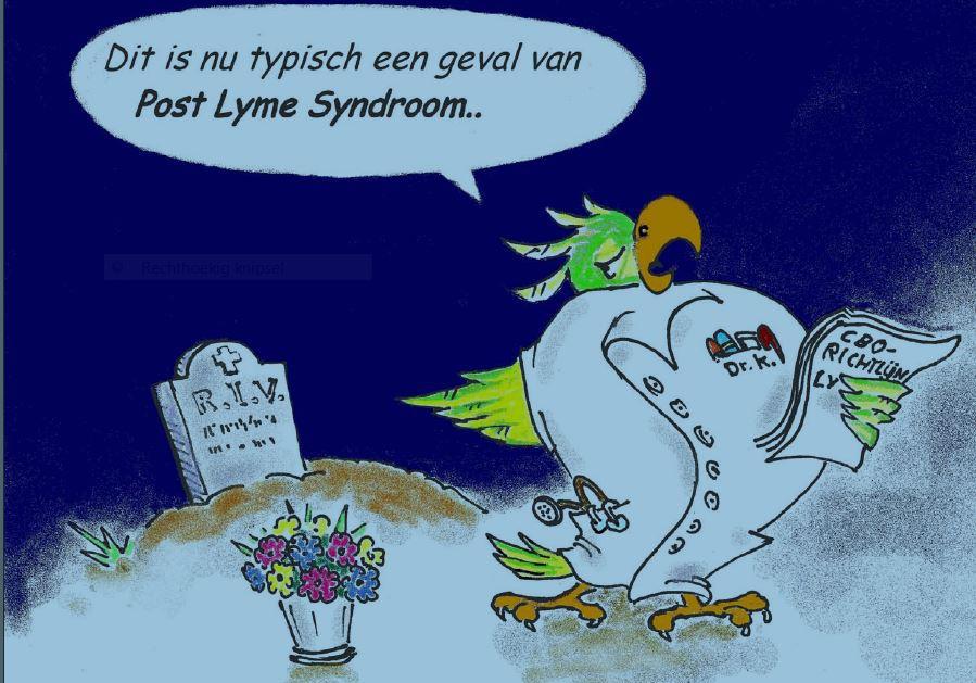 Post-Lyme