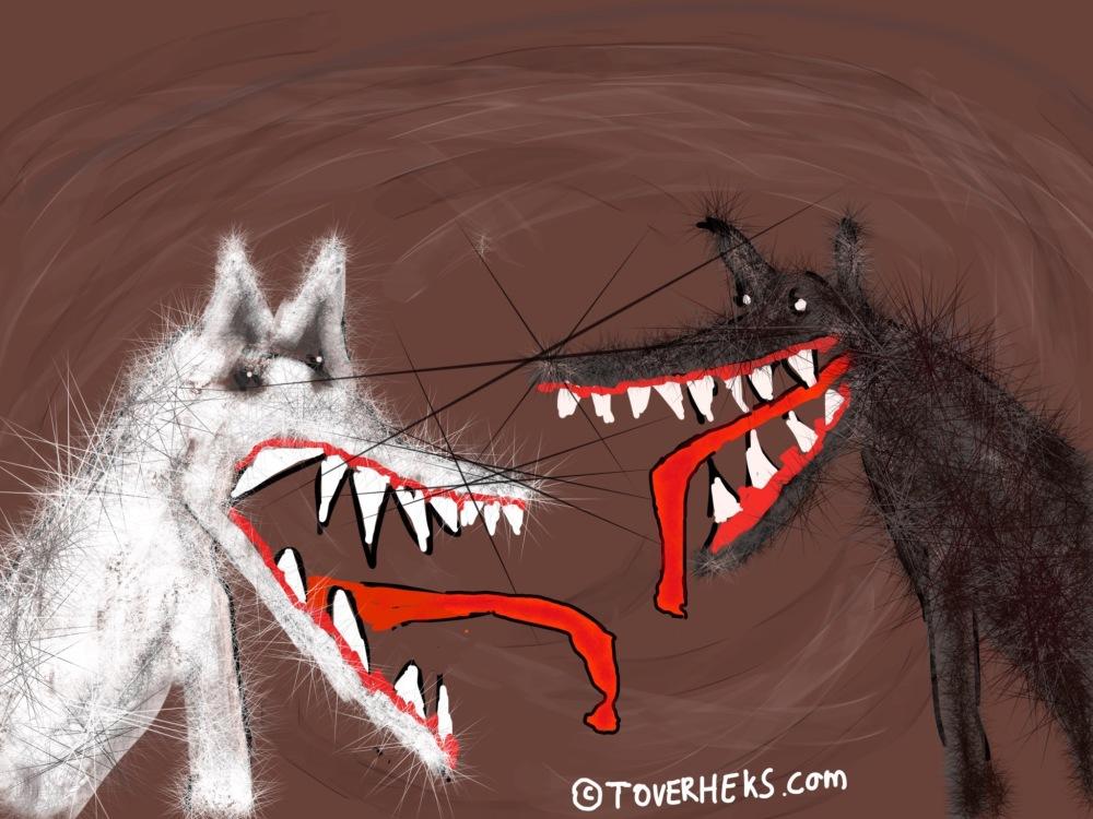 ©TOVERHEKS.COM Witte wolf en zwarte wolf