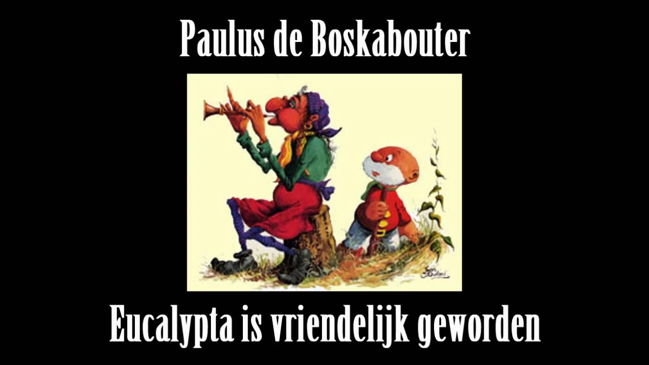 EUCALYPTA, PAULUS DE BOSKABOUTER, TOVERHEKS,